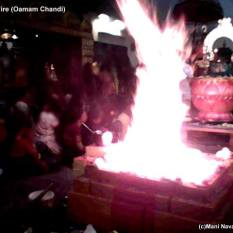 Durgas Fire - London (c) Mani Navasothy 2012