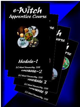 e-Witch Apprentice Course 2012