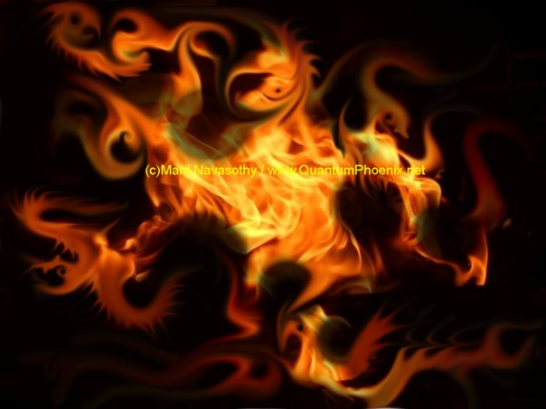 Phoenix from the Flame - graphics (c) Mani Navasothy