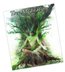 Tree Meditation. graphics (c) Mani N 2011