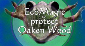 Eco-Magic- Protect Oaken Wood