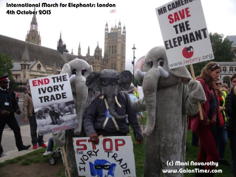 Elephants Unite at the International March for Elephants (London) - with Elephantom in the middle