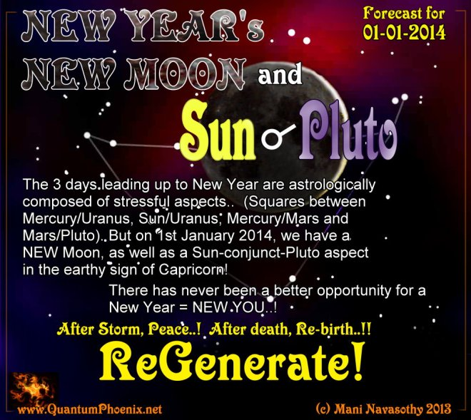 New year 2014 forecast (c) Mani Navasothy 2013