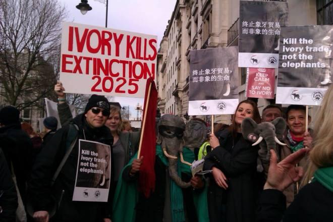 elephantom & many friends outside Chinese Embassy (London)  - photo (c) Vathani Navasothy 2014