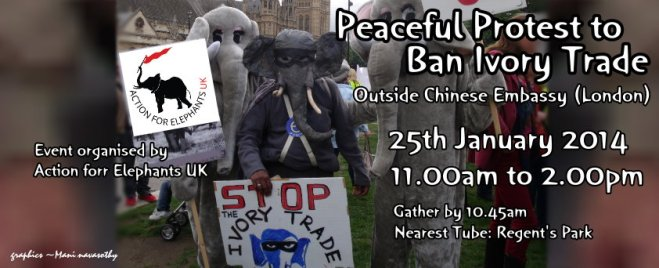 Peaceful protest 25Jan2014 to ban ivory - Outside chinese embassy (London)