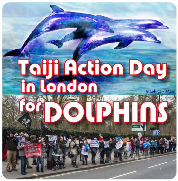 Taiji Action day in London for Dolphins