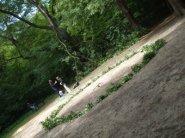 Queens Woods- Oakleaf circle