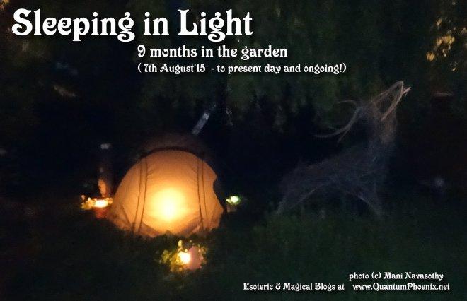 Slepeing in light- 9 months in garden (c) Mani Navasothy 2016