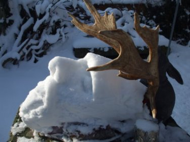 snow covered antlers- sculpted 2009