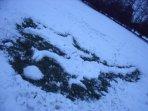 snow dragon 2010