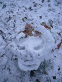 snow horned- st james park 2010