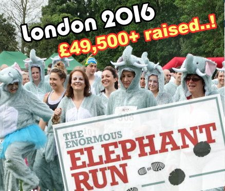 Enormous Elephant Run 2016 (London) raises over £50,000!