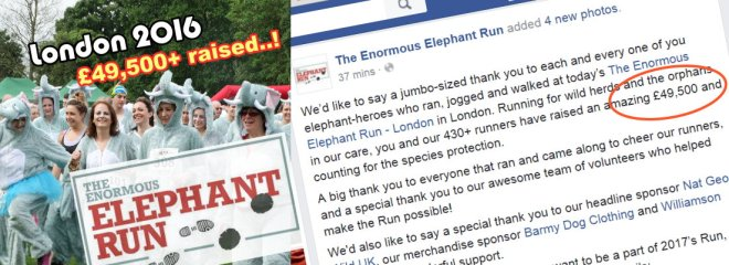 Enormous Elephant Run - raised at 11june16
