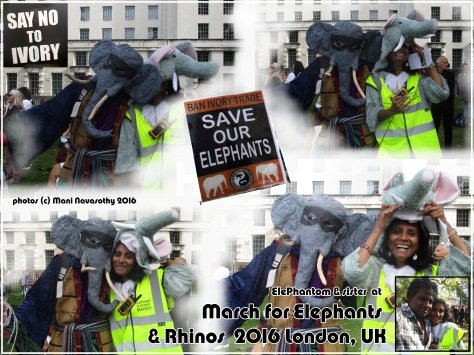 Elephantom & Vathani at march for Elephants & Rhinos 2016 London.jpg