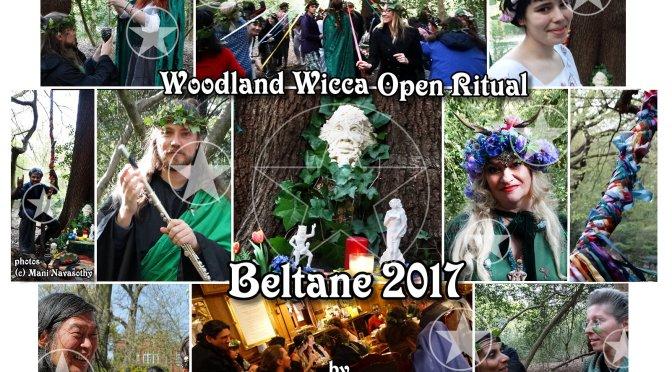 Woodland Beltane Gathering & Maypole Dancing 2017