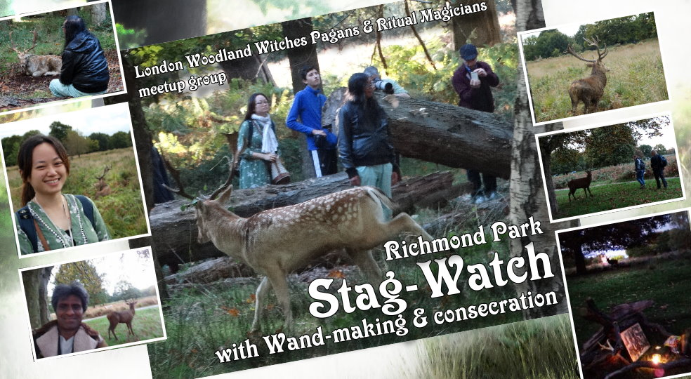 Woodland witches Stagwatch 2018 & wand making