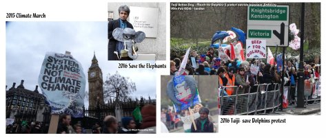 Climate march Taiji Dolphins Save Elephants - Protest marches Mani Navasothy.jpg