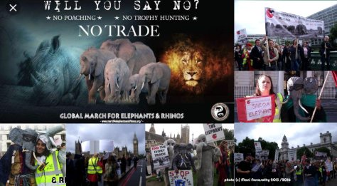 GMFER March for Elephants 13april2019